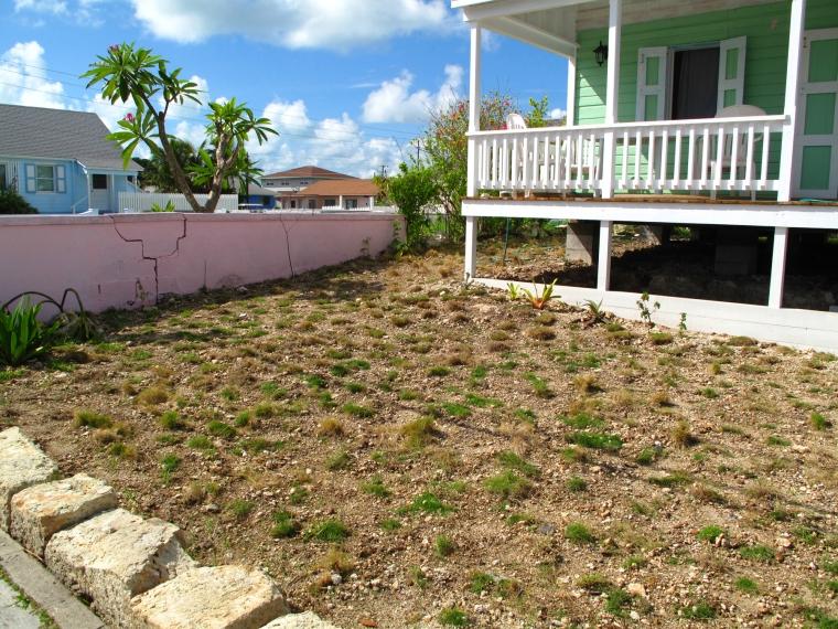 bahamas, abaco, green turtle cay, fish hooks, zoysia