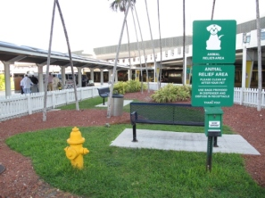 bahamas, abaco, miami, miami airport, pet relief area