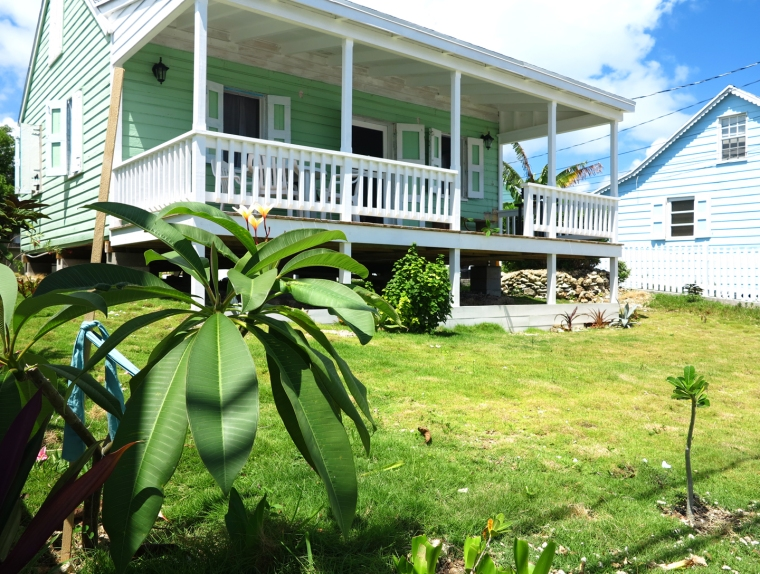 bahamas, abaco, green turtle cay, garden, horticulture, frangipani, fish hooks