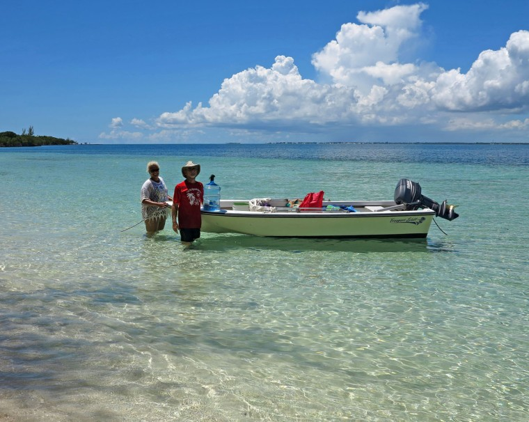 bahamas, abaco, green turtle cay, no name cay, pigs