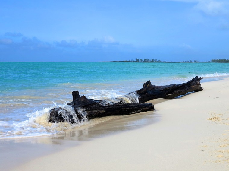 Driftwood at Gillam Bay - Green Turtle Cay