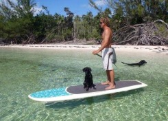 bahamas, abaco, green turtle cay, paddleboard