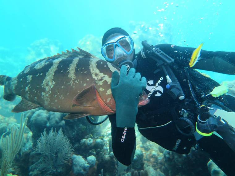 bahamas, abaco, green turtle cay, scuba, brendal