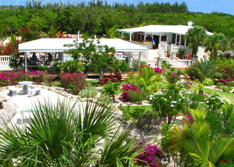 bahamas, abaco, green turtle cay, leeward yacht club, lizard bar and grill