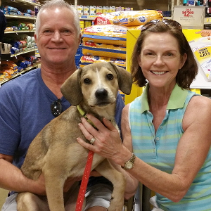 Potcake Harrison, adopted 2015, with his new forever family.