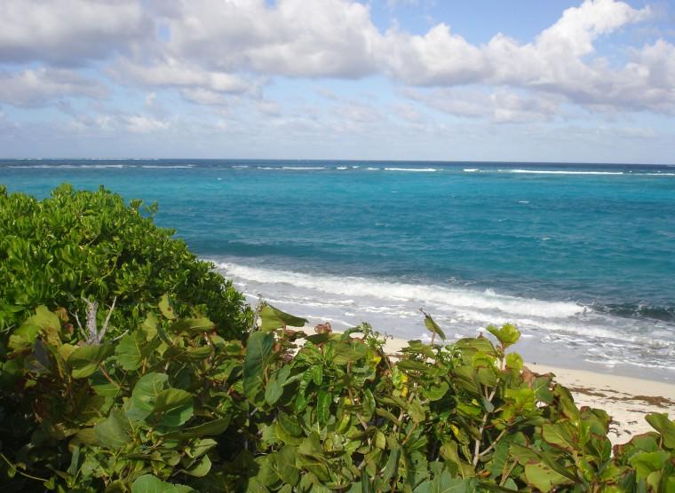 Ocean beach, Green Turtle Cay, Abaco, Bahamas.