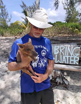 Abaco's No Name Cay Pigs Need Fresh Water