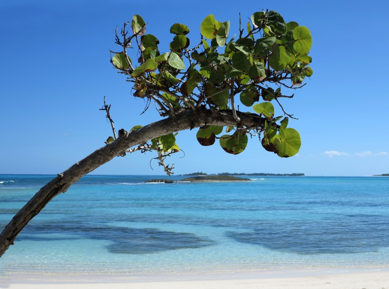 Calm Day at Bita Bay - Green Turtle Cay, Abaco, Bahamas