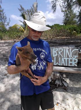 A New Source of Fresh Water for the No Name Cay Pigs