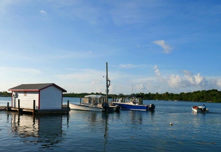 High tide on Settlement Creek, Green Turtle Cay, Bahamas. www.littlehousebytheferry.com