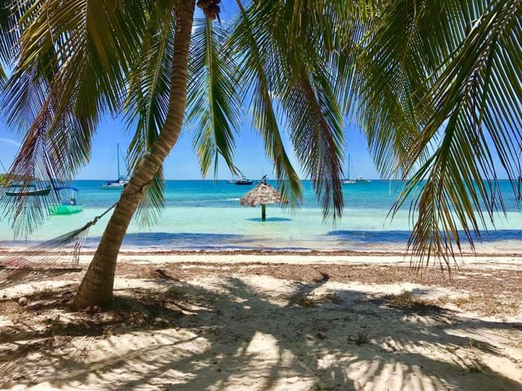 Munjack Cay by Mandy Bennett Roberts