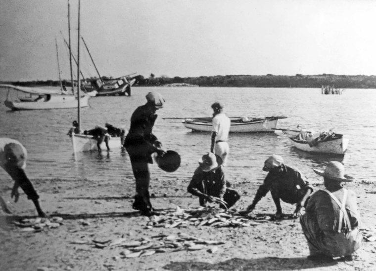 "Fishermen ""lotting"" the day's catch"